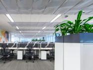 Ecoustic Matrix Ceiling